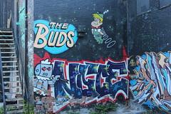 St. Catharines Street Art (jmaxtours) Tags: streetart ontario graffiti rosie elroy stcatharines graffitialley elroyjetson stcatharinesontario thebuds jestson stcatharinesstreetart