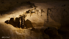 Carlsbad Caverns - Natural Entrance (Alfred J. Lockwood Photography) Tags: newmexico nature landscape nationalpark cave stalagmite stalagtite carlsbadcavernsnationalpark alfredjlockwood