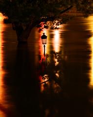 Crue de la Seine 2016 - Paris, Quai de Bourbon, le Saint-Louis (EclairagePublic.eu) Tags: paris seine flooding eau flood lumire berge quai inondation lampadaire naturelle catastrophe crue luminaire candlabre