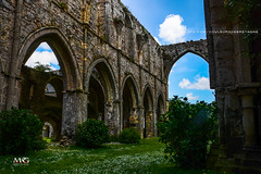 Beauport-06-16_65 (mgroyaume) Tags: abbaye maritime beauport bretagne brittany ctes armor abbey littoral conservatoire moyen ge middle age