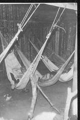 10 (Um resgate coletivo da histria) Tags: familiares araguaia caravana armazm guerrilha memria