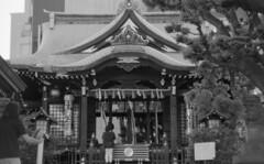 160505_PentaxME_024 (Matsui Hiroyuki) Tags: pentaxme fujifilmneopan100acros jupiter985mmf20 epsongtx8203200dpi