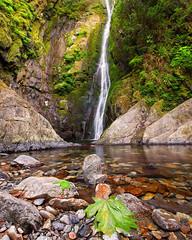 Little Niagara Falls Goldstream (dharnan) Tags: green vancouver island happy waterfall long exposure calming columbia calm goldstream lee barefoot british serene filters moisture moist yyj