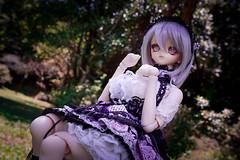 Mena moe moe~ (kurai / ) Tags: mena dd dollfiedream outdoor volks