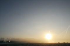 Sonnenaufgang in der Ossenvenne; Norderstapel, Stapelholm (2) (Chironius) Tags: stapelholm norderstapel schleswigholstein deutschland germany allemagne alemania germania    ogie pomie szlezwigholsztyn niemcy pomienie morgendmmerung sonnenaufgang morgengrauen  morgen morning dawn sunrise matin aube mattina alba ochtend dageraad zonsopgang   amanecer morgens dmmerung