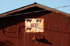 Four Kinds of BEEF (jpmatth) Tags: county morning summer color sign barn digital sunrise canon eos fairgrounds lenstagged illinois cows hometown beef christian faded mk2 5d taylorville 2016 ef200mm28lmk1