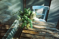bouquet. (madhjamaka) Tags: morning light summer plant reflection green analog table bouquet expired agfacolor200 skritek olympusmjui