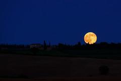 Luna piena in Val D'Orcia (binoguzzi) Tags: moon fuji luna campagna tuscany fujifilm toscana valdorcia fujinon piena solstizio pesaggio xt10 xc50230
