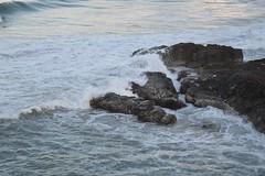 DSC_0080 (JP98AUS) Tags: beach scenery nsw water sunset