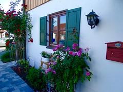 DSC03820 (Mr.J.Martin) Tags: tusslingbavaria bayren germany gapp garden canal village church wildflowers