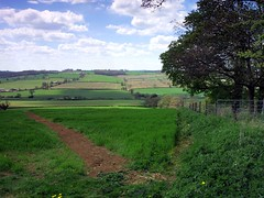 In Englands Green and Fertile Land (saxonfenken) Tags: tree landscape leicestershire path hill dirtpath greenfields 7083 pregamesweepwinner 6thmayrutlande30 7083land