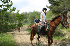 Passeggiata a cavallo (Rudy - drivEvent) Tags: horses horse trekking riding cavalli cavallo maneggio equitazione