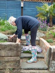 Gardening 011 (Glimmer Rat) Tags: wellies rubberboots gummistiefel wellingtons gumboots rainboots