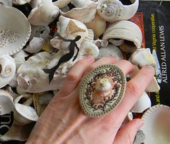 secrets in the shell ring6 (Danny W. Mansmith) Tags: handmade oneofakind details seashell wearableart homespun elastic dannymansmith satinstitch tinystitches fabricrings stopmotionsewing