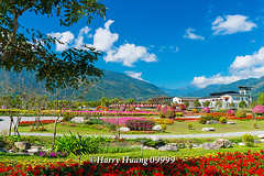 Harry_09999,,,,,,,,,,,,,,,,,, (HarryTaiwan) Tags: taiwan    d800                  harryhuang     hgf78354ms35hinetnet