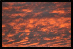 Auckland sunset clouds (Zelda Wynn) Tags: orange weather auckland sunsetclouds troposphere zeldawynnphotography