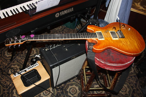 Guitars, Ukuleles, etc. [Necked Box Lutes played with Hands] 14 - Electric Guitar (of John Etheridge)