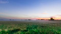 Foggy Pasture (DavinG.) Tags: sunset summer panorama fog rural 35mm canon landscape cows foggy panoramic pasture alberta vegreville 5dmk3 davingphotography