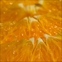 Divided into segments. (Yvette-) Tags: orange divided macromondays nikkorf28105mm nikond5100