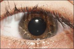 _DSC0471 (Fabrizio Balconi) Tags: eye dettagli occhio