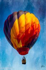 Plano Balloon Festival (www.JudyLindoPhotography.com) Tags: balloons planotexas planoballoonfestival2013