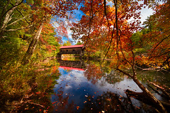 Waterloo Covered Bridge (Robert Clifford) Tags: bridge autumn trees reflection fall water foliage waterloo coveredbridge waterloocoveredbridge cliffordphotography robertallanclifford cliffordphotographynhcom