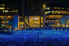 SDIM2921 (Shiruchi) Tags: japan tokyo illumination sigma midtown  roppongi