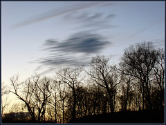 Between Heaven and Earth (Photographic Poetry) Tags: morning trees sky nature sunrise twilight heavenandearth