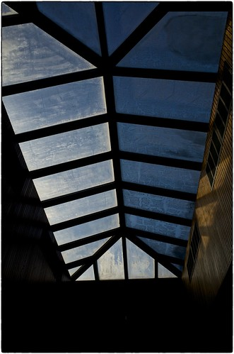 Icy Skylight, November 25, 2013