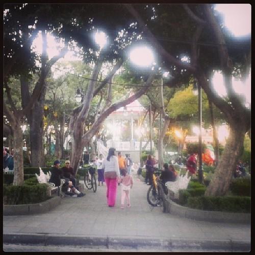 #mexico#tlalpan#mexicocity#park
