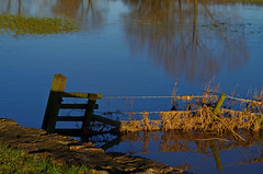 891-24L (Lozarithm) Tags: lacock nt floods rivers riveravon riveravonbristol landscape lacockabbey kx k50 55300 justpentax hdpda55300mmf458edwr pentax zoom