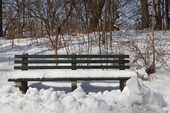 I'll be back in Spring (nycbone) Tags: winter snow brooklyn bench prospectpark parkslope urbannature