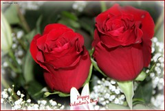 Happy Valentine's Day! (MEA Images) Tags: flowers roses love canon flora blossoms bouquet valentinesday redroses mygearandme mygearandmepremium mygearandmebronze mygearandmesilver picmonkey:app=editor