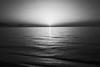 bright light over the horizon (gorbot.) Tags: sunset sea summer blackandwhite sun beach finale m43 pollina silverefex micro43 microfourthirds panasoniclumixgf1 20mmlumixf17