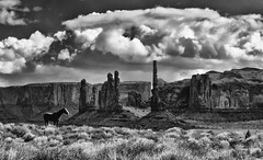 End of the Day: B&W (Jeff Clow) Tags: arizona horse usa landscape western monumentvalley equine theoldwest jeffrclow jeffclowphototours