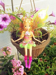 Winx club believix dolls for sale