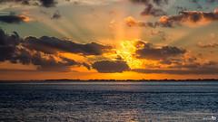 Sunset Sun Rays (BraCom (Bram)) Tags: sunset holland reflection clouds canon river coast zonsondergang widescreen nederland thenetherlands wolken zeeland sunrays 169 kust rivier spiegeling zuidbeveland zonnestralen estuarium westerschelde hansweert canonef24105mm goldstaraward bracom canoneos5dmkiii bramvanbroekhoven