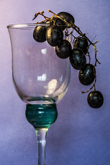 Glass Of Grapes (Nikon Nutter 2009) Tags: light color glass grapes