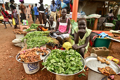 Young girls running a fresh food market stall in UN House PoC camp. (tommcshanephotography) Tags: africa travel war southsudan refugees un unitednations conflict wtn dinka unhouse juba rivernile neur humanitariancrises tommcshanephotography levwood levisonwood walkthenile