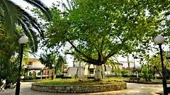 Inachos' square (MrSigmaKappa) Tags: village argos argolida ελλαδα χωριο inahos πλατεια αργοσ αργολιδα πλατανοσ ιναχοσ inachos inaxos