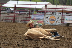 019 (facesofcowtown) Tags: nj rodeo augusta sussexcounty augustanj sussexchristianschool