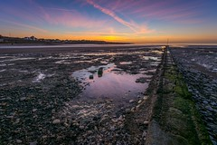On the groyne (James Waghorn) Tags: winter sunset england seaweed beach clouds reflections chalk kent nikon rocks alone shadows contrails ultrawide groyne lightroom westgateonsea sigma1020f456 d7100