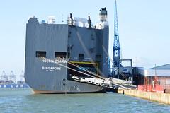 Hoegh Osaka (PD3.) Tags: water car docks sand singapore ship sink ships bank solent osaka jaguar southampton salvage sinking transporter sandbank bramble capsize capsized accicdent hoegh