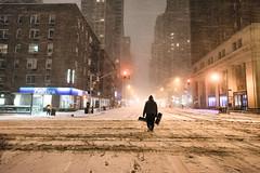 New York City - Snow - Winter Storm Juno - Empty 6th Avenue (Vivienne Gucwa) Tags: nyc newyorkcity winter snow newyork manhattan snowstorm gothamist curbed urbanphotography newyorkatnight nycnight nycwinter nycsnow citysnow newyorksnow nycblizzard nycbook cityphotography newyorkwinter newyorkcityphotography newyorkphotographer newyorkbook viviennegucwa viviennegucwaphotography noreasternyc nythroughthelens newyorkphotographybook blizzard2015 2015snowstormnyc historicblizzardnewyorkcity juno2015newyorkcity junonyc newyorkcityjuno newyorkinablizzard