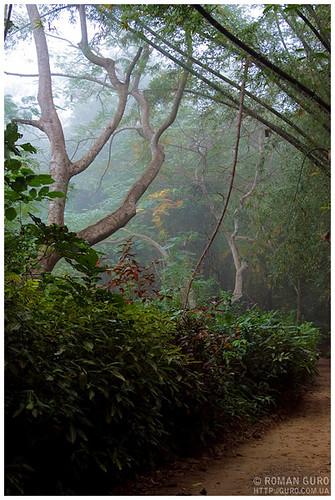 На пути в деревню Монов | Thailand