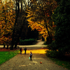 Vision... (rogilde - roberto la forgia) Tags: comunicazione vision sentiero autunno atmosfera percorsi alieni muri monza comunication percorso sociale cammino separazioni alieno suggestivo vialetto automa asociale socializzazione rogilde alienante suggestiva automi camminer robertolaforgia