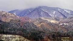 Mountain at Takayama (hippo350) Tags: japan tokyo takayama gifu