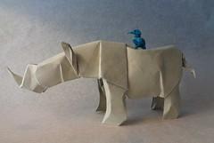 Rhino and Kingfisher (mrmicawer) Tags: origami martin selva rhino kingfisher papel papiroflexia pescador sabana rinoceronte jungla
