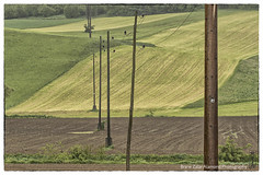 electricity (alamond) Tags: green field canon landscape is wire line pole 7d land electricity l usm patch patchwork ef mkii markii 70300 brane llens f456 alamond zalar