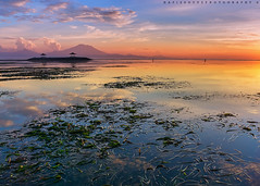 Morning Bali (Hafiz.Soyuz.Photography) Tags: ocean morning travel sea bali mountain seaweed beach nature clouds sunrise indonesia landscapes seascapes postcard sony landmark calm size alpha 6000 phototrip sanur karang